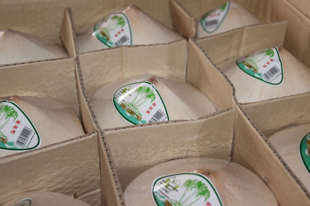 CocoNow Trinkkokosnuss im Paket